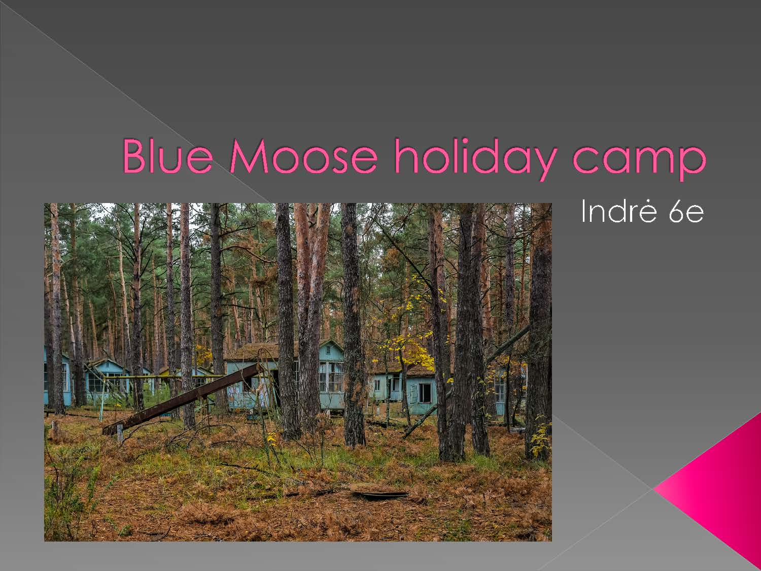 Indre-k-6e-Blue-Moose-holiday-camp_Page_1