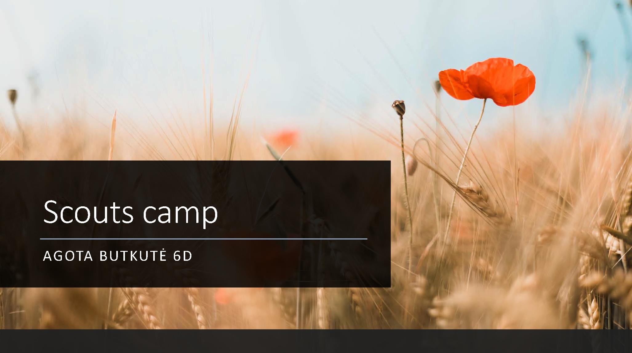 Scouts-camp-agota-6d_Page_1