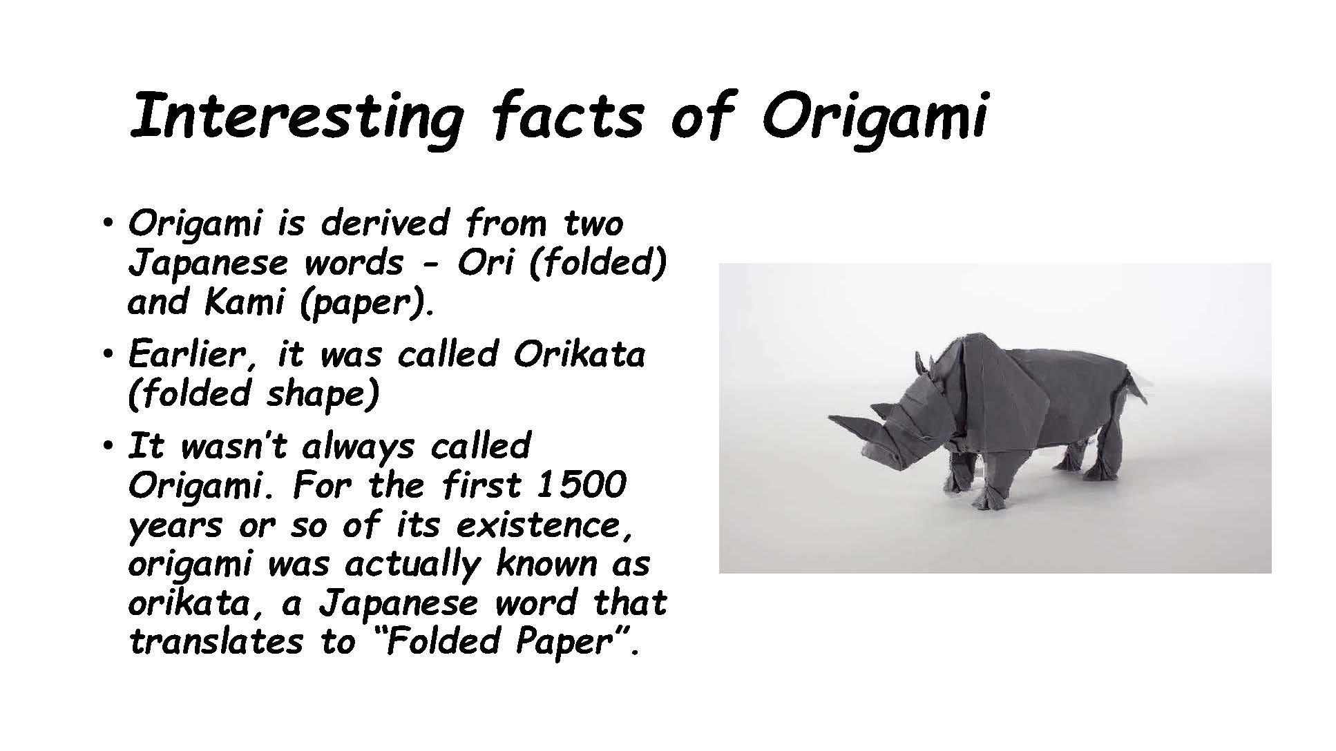 The-Art-of-Origami-–-My-Experience-karina-greta-daniela-gabriele-p_Page_11