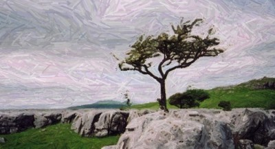 wuthering heights (3)