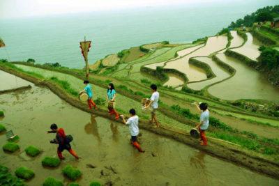 kebudayaan_darangee_village_korea_selatan